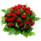 Bloemen laten bezorgen met een Telegram